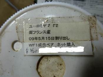 P1040469.jpg