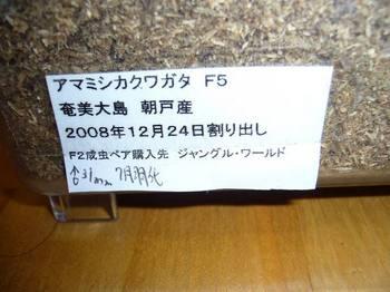 P1040805.jpg