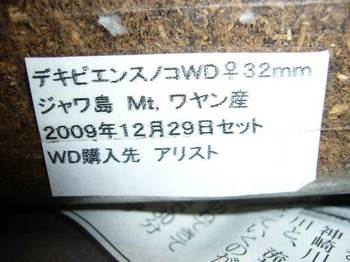 P1050189.jpg