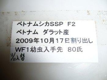 P1050273.jpg