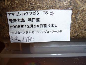 P1040804.jpg