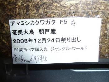 P1040982.jpg