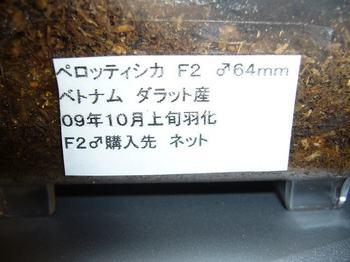 P1040992.jpg